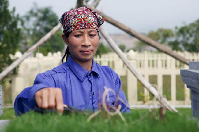 lạc hồng viên, lac hong vien, dịch vụ chăm sóc khuôn viên phần mộ